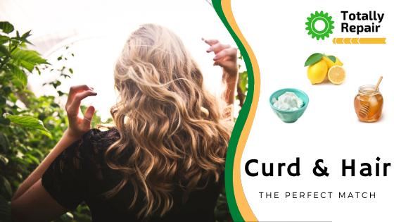 Curd & Hair
